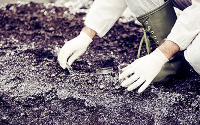 The tax implications if your business engages in environmental cleanup